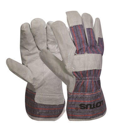 Picture of Lotus LWG1201 Working Gloves (Cs/Plined)
