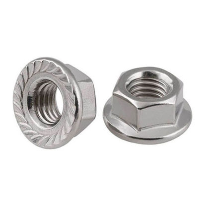 Picture of 304 Stainless Steel Flange Nut