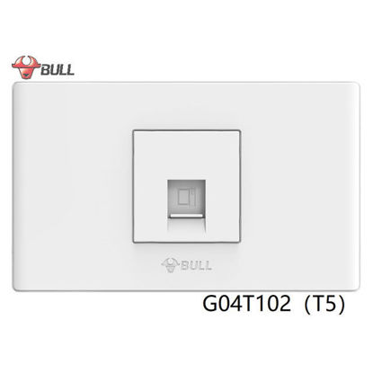 Picture of Bull 1 Gang Computer Modular Outlet Set (White), G04T102(T5)